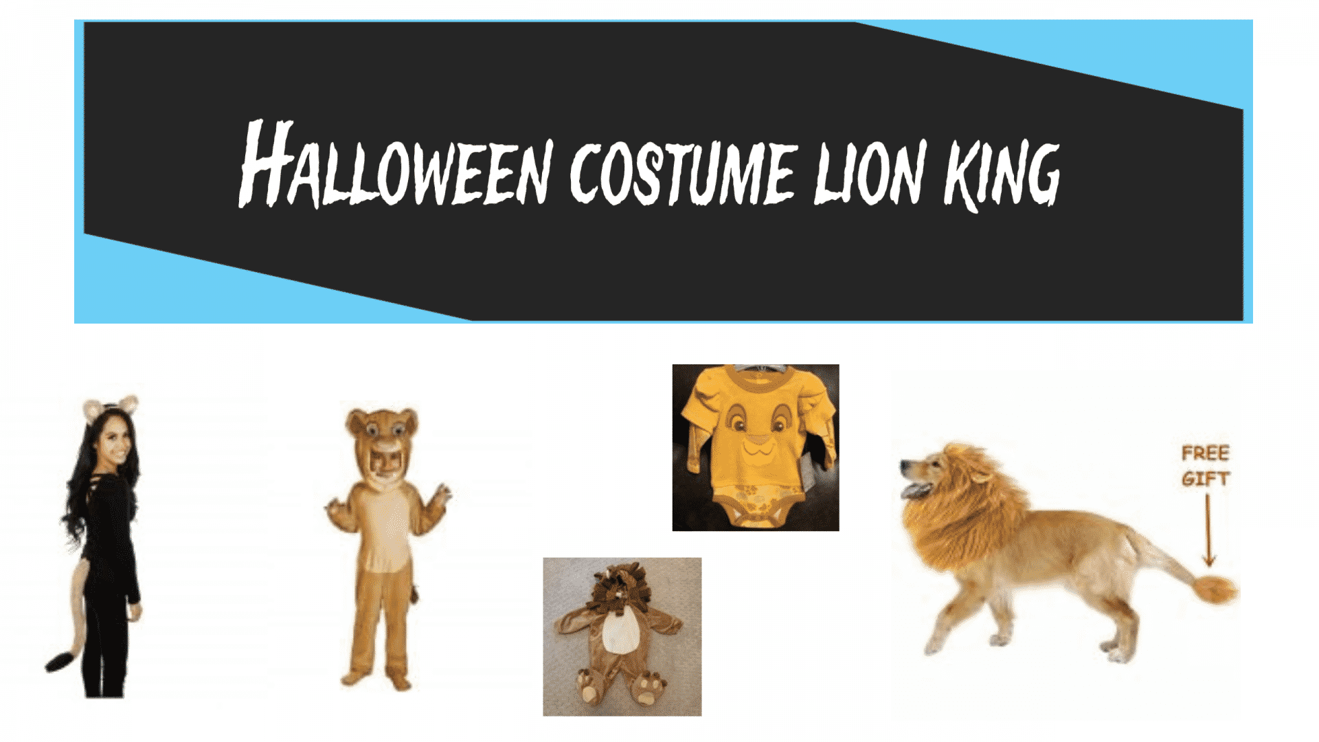 Halloween costume lion king